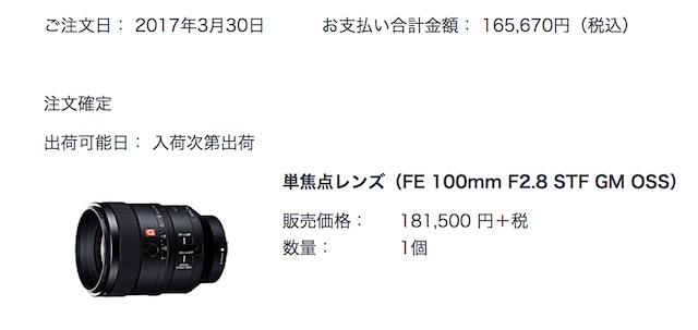 SEL100F28GMを購入