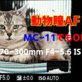 驚き!α7R IIIの動物瞳AFをMC-11 × キヤノンEF70-300mmで試した結果