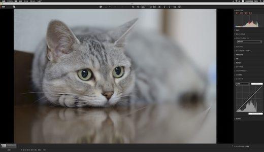 【悲報】無料で使えるソニー純正RAW現像ソフト「Imaging Edge(Edit)」全く使い物にならず
